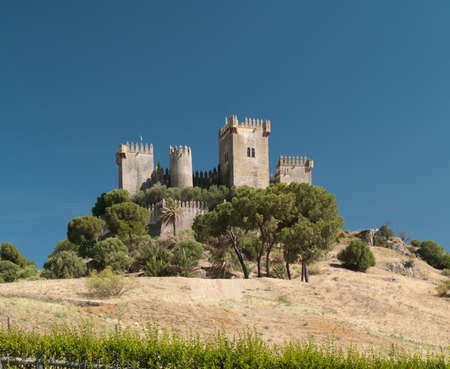 castle of Almodovar del Rio, Andalusia, spain