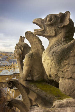 Gargoyles of Notre Dame over Paris Stock Photo - 16482163