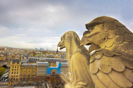Gargoyles of Notre Dame over Paris aerial Stock Photo - 16482179