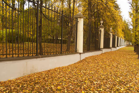 Herbstgasse in klassischen Park, Warschau, Polen