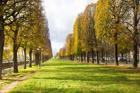 Autumn city alley in Paris near Seine river