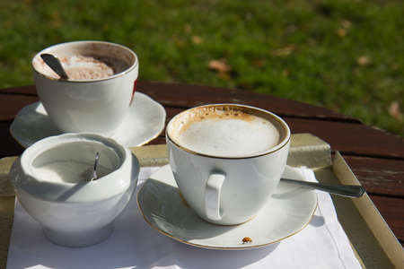 cappuccino coffee cup and chocolate with sugar bowl on wooden table in the garden with ladybird on saucer