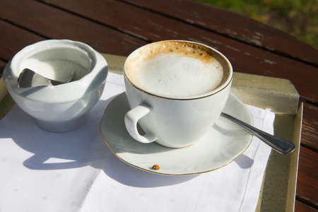 cappuccino coffee cup with sugar bowl on wooden table in the garden with ladybird on saucer Stock Photo