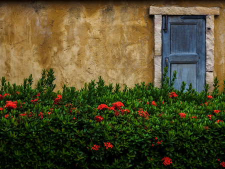 Window in the stone wall with closed wooden blinds Stock Photo
