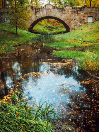 Small river in the autumn park. Yellow leaves in the water. Ruin bridge