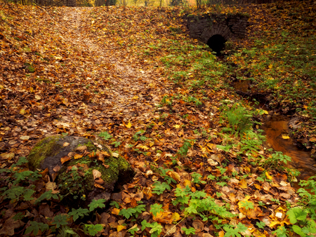 Autumn park. Stone bridge over a small stream
