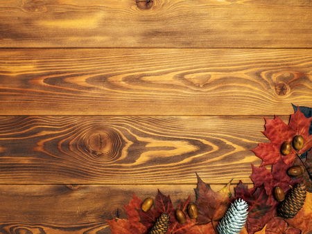 Autumn background. Maple leaves with cones and acorns on the wooden board. Top view Stock Photo