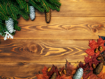 Autumn and winter background. Maple leaves, fir branches, fir cones and acorns on the wooden board. Top view