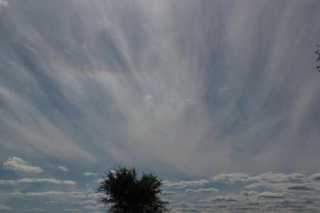 Sky Tree Clouds Imagens