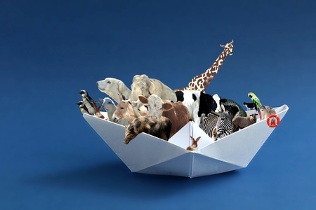 Noah´s Ark Stock Photo - 11577625