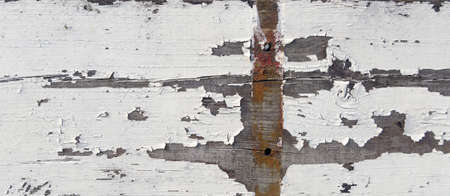 Texture of crackled white paint on wood