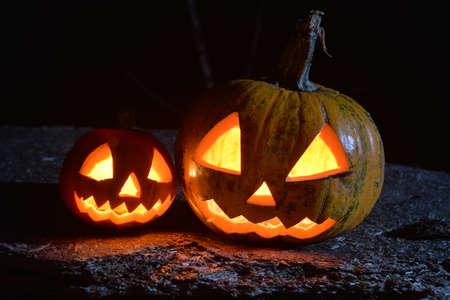 glowing halloween pumpkins in the dark forest under moonlight
