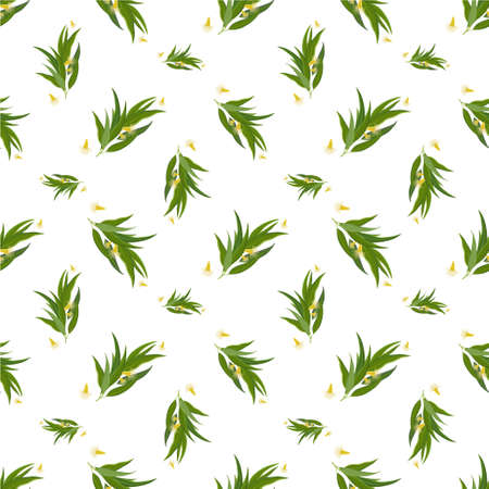 eucalyptus: Vector seamless pattern with eucalyptus twig, flowers and leaves. Elegant background for website, packaging, digital scrapbooking, wallpapers, textile and wrapping paper Illustration