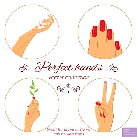 nail salon: Nail and hand care illustration set. Elegant female hands with different nail polish. Manicure icon set. Vector iilustration. Effects: Clipping mask. EPS8 file, 6249x6249px preview. Illustration