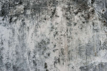 Grunge wall texture. White old wall with black sooty spots and fungi, urban texture
