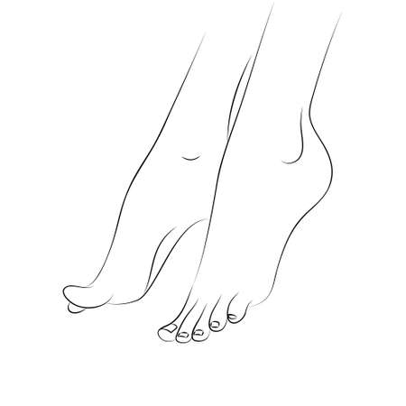 Womans feet outline vector isolated on white background. Pedicure, podiatry and body care vector concept. Line drawing body parts. Design element for web icons, pedicure, spa brochures, fliers