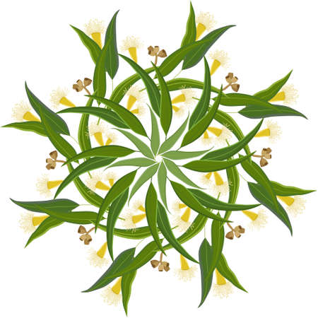 Abstract round ornament, mandala with eucalyptus leaves and flowers. Colorful circular floral motif, pattern isolated on white background