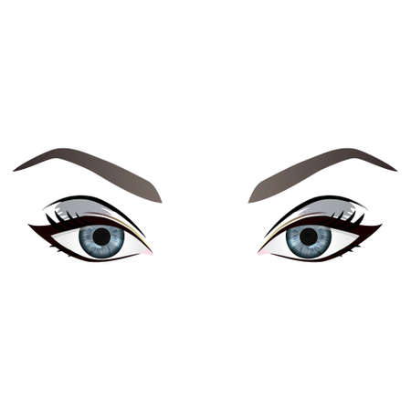 human eye close up: Realistic cartoon vector female grey eyes and eyebrows and fashion make up. Grey eyes and brows design element, body parts isolated on white background. Eyes close up