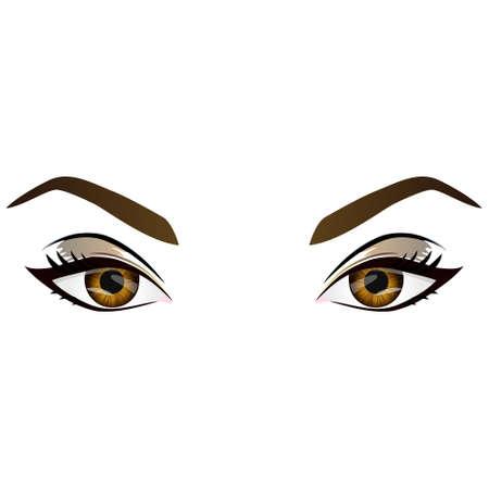 Réaliste dessin animé vecteur femmes yeux et les sourcils bruns et la mode maquillage. Hazel élément de conception des yeux et des sourcils, des parties du corps isolé sur fond blanc. Yeux de près Vecteurs