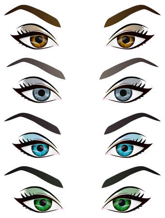 Set of realistic cartoon vector female eyes and eyebrows with different color and make up. Brown, blue, green, grey woman eyes and brows design element, body parts isolated on white background Illustration
