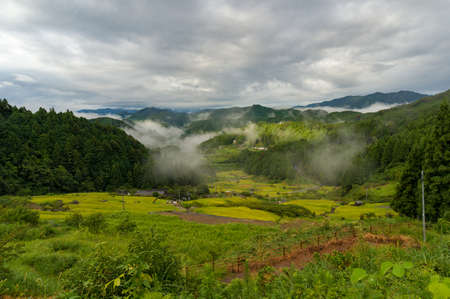 Japanese rural landscape with rice terraces in mountain forest with patches of fog on slopes. Yotsuya No Semmaida rice fields. Shinshiro, Aichi prefecture, Japan