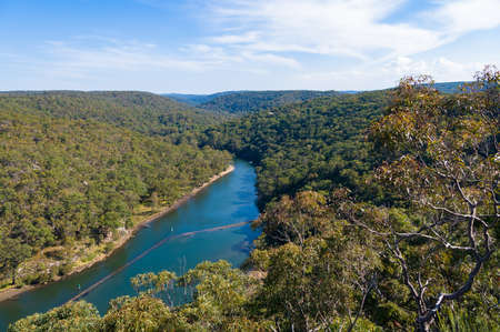Eucalyptus forest of Royal National Park with Hacking river. Australian nature landscape background, Stock Photo