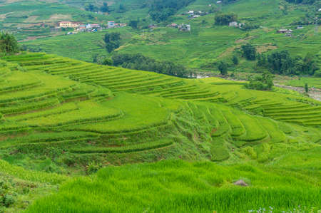 Spectacular rice terraces with green rice grass. Travel nature background