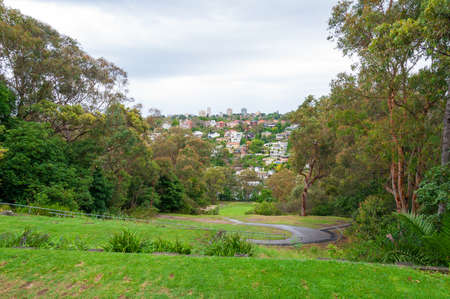 Green park with pedestrian path and suburbian cityscape on the background. Sydney, Australia