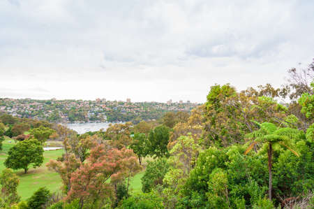 View on suburban sprawl from the park with lush trees. Sydney, Australia