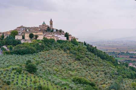 Italiaans plattelandslandschap van olijfgaarden en de oude stad van Trevi