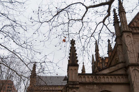Pinnacles of old Gothic style church with silhouettes of tree branches against overcast sky on the background. Gloomy Gothic background. Focus on pinncales