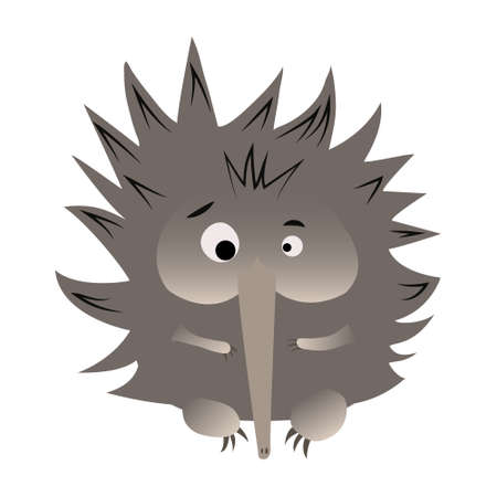 Surprised echidna cartoon caracter isolated on white background. Cute native Australian animals hand drawn vector illustration