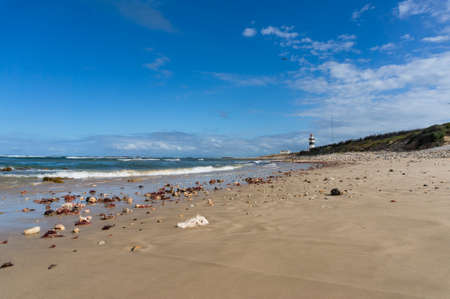 Ocean view landscape with sandy beach and lighthouse in the distance. Beautiful coastline seascape with seashells and corals on sand and Cape Recife beacon at the background. Port Elizabeth, South Africa