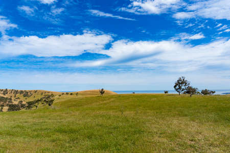 Agriculture landscape of picturesque pasture, field with distant ocean view on sunny day. Countryside, rural background