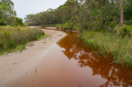 Dirty red water of forest creek, river. Contamination, pollution of water sources