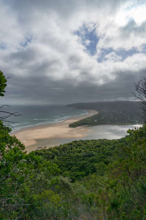 Landscape of beautiful sandy beach and green summer forest. Natures Valley, South Africa