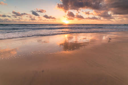 Beautiful sunrise at tropical sandy beach with mild waves and picturesque sky. Tropical summer background