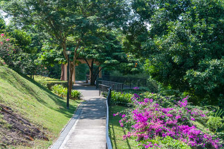 Path to summerhouse, pavilion in tropical park. Mount Faber public park, Singapore