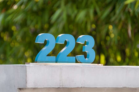 Arabic numerals of 223, two hundred twenty three, blue 223 characters against bokeh plants on the background Imagens