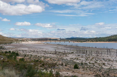 Theewaterskloof Dam in drought with dry trees. Western Cape province, South Africa