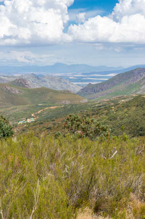 Scenic mountain landscape. Mountain valley with fynbos nature travel background Stock fotó