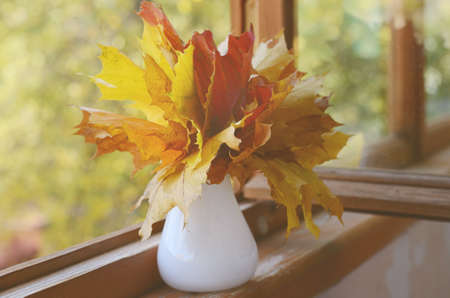 Autumn maple leaves bunch in vase on old wooden windowsill photo