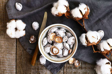 pits: Decoration with salt apricot pits and cotton flowers on wooden background Stock Photo