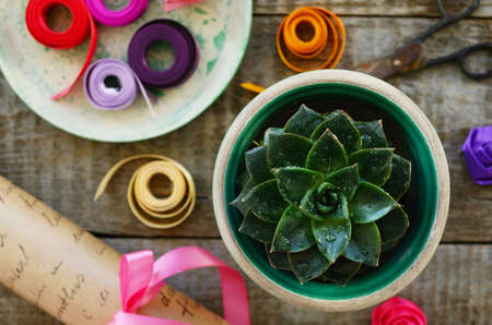 Table in flower shop - stone rose cactus, wrap paper roll, set of colorful ribbons, bow and decor, vintage scissors photo
