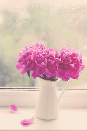 Bouquet of pink peonies in white pitcher on a windowsill, vintage effect Stock Photo