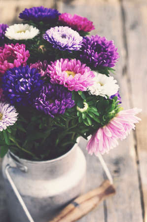 flores moradas: Bunch of colorful asters in old milk can, vintage effect
