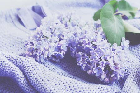 colores pastel: flores de color lila y sensible sobre el jersey de punto, colores pastel