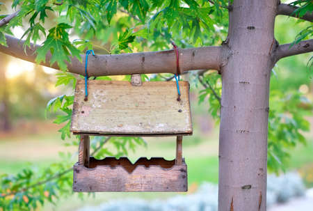 pigeon holes: Bird house hanging from the tree.