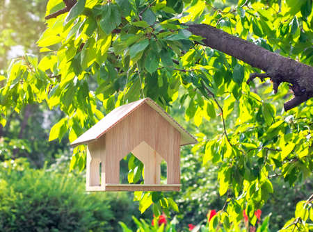 pigeon holes: Bird house on the tree