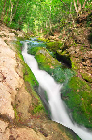 range of motion: Mountain river in forest and mountain terrain.
